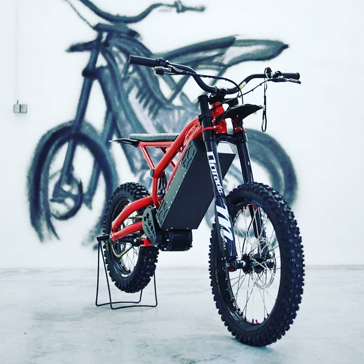 RevX offroad electric motorcycle Mrazek | Electric Motorcycles News